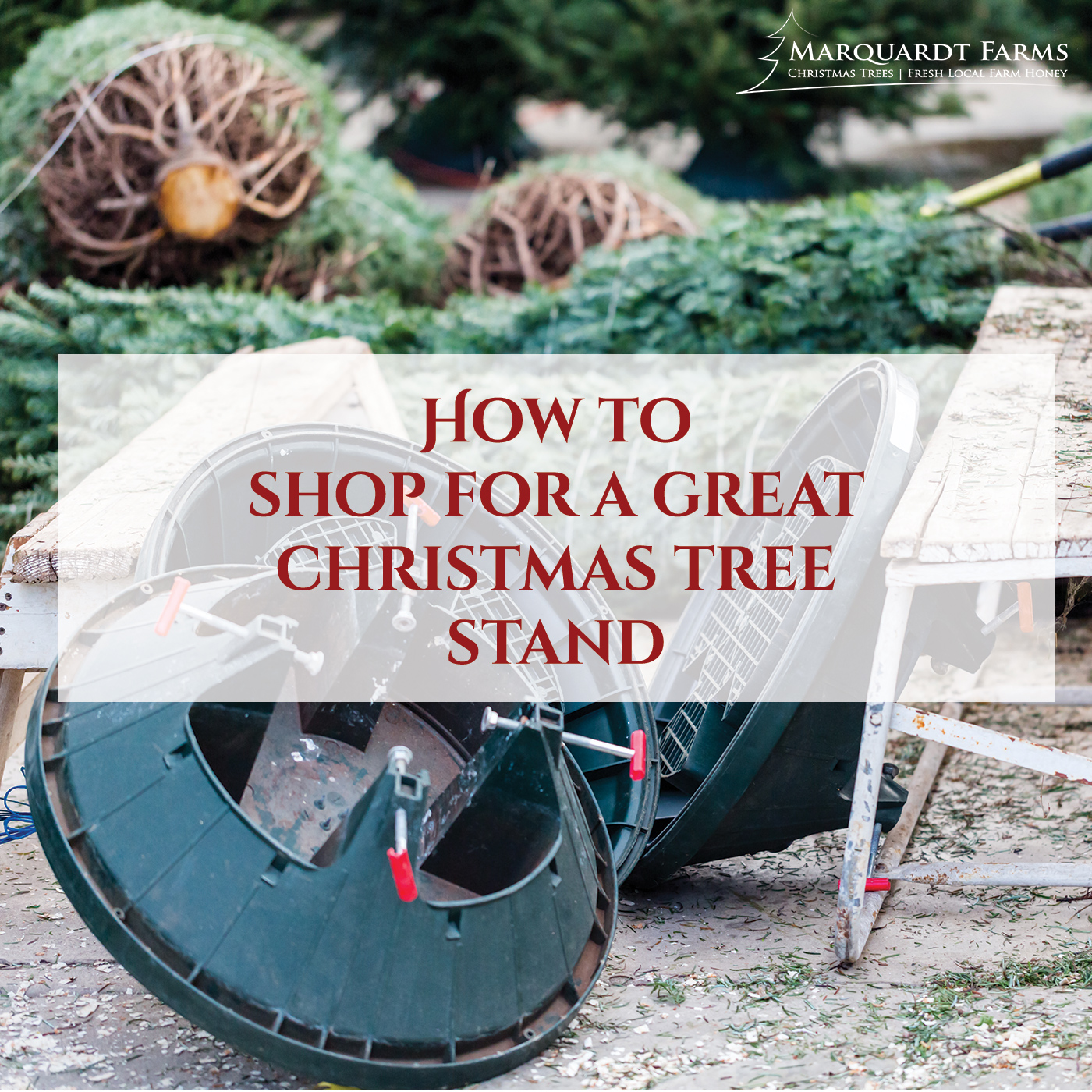 How To Shop for A Good Christmas Tree Stand - Marquardt Farms